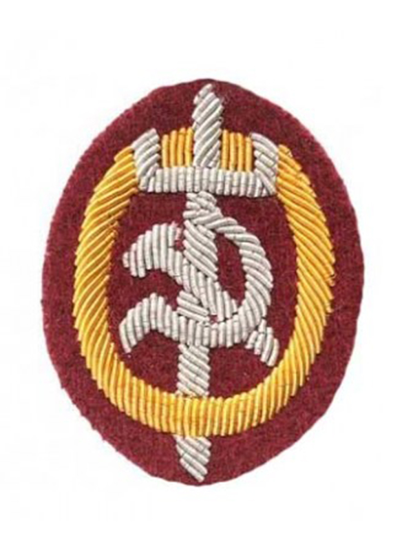 RANK & SLEEVE CHEVRONS